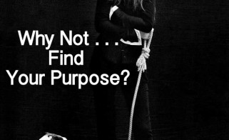 Why Not . . . Find Your Purpose?