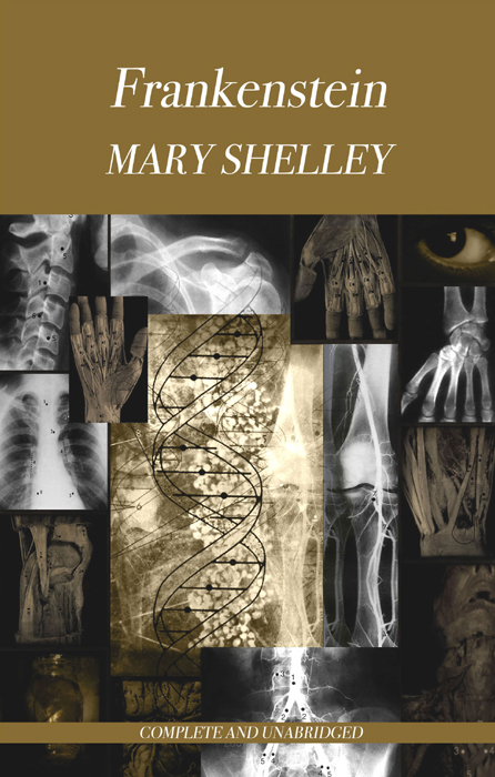 the consequences of ambition in frankenstein a novel by mary shelley Everyone has probably either watched one of the multiple adaptions of mary shelley's novel or at least heard about the monster  mary shelley frankenstein.