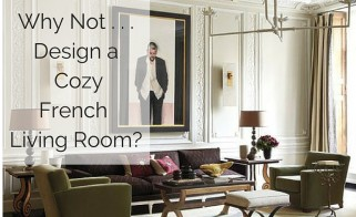 Why Not . . . Style a Cozy French Living Room?
